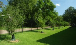 Drake Elms Landscaping Apartments Jackson MS
